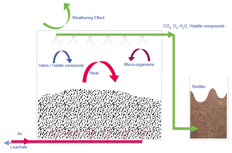 tunel_Compostin_webEN